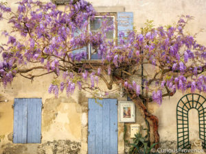 photographer in provence