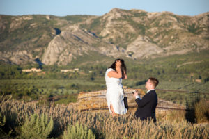 surprise proposal les baux de provence